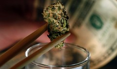 Everyone in Colorado may get a pot tax refund