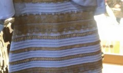 The dress: See the real color for yourself