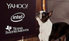 Nasdaq dogs: Cisco, Sirius and Yahoo got left behind