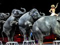 Ringling Bros. to phase out elephants from circus shows