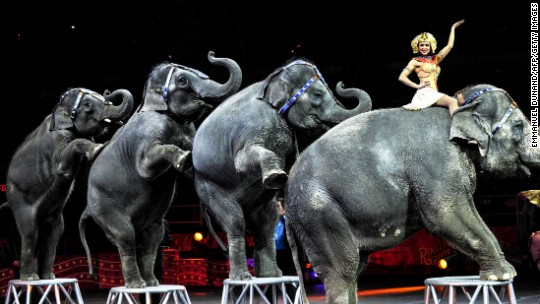 No more elephants at Greatest Show on Earth