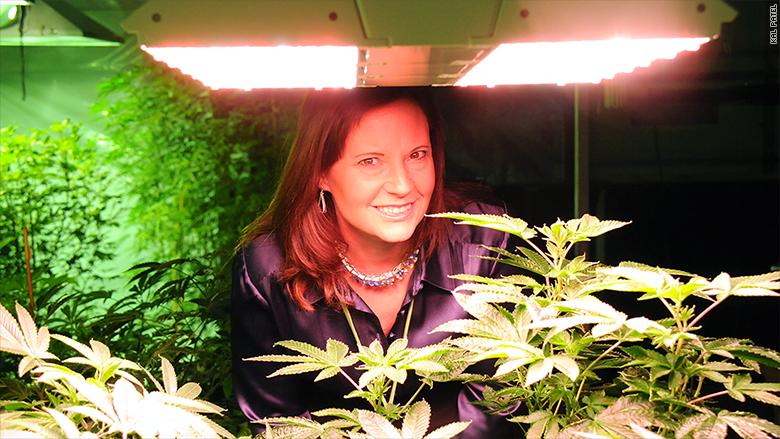 marijuana start ups