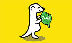 Meerkat announces $14 million in funding