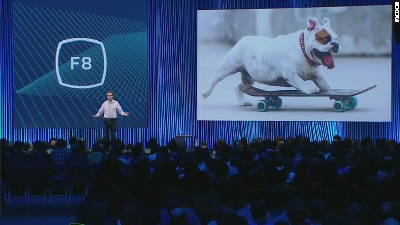 facebook Schroeper dog