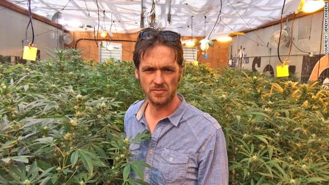 24 horas con un productor de marihuana
