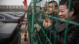China's anti-corruption drive: The greatest hits