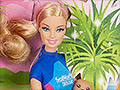 Mattel ends SeaWorld-themed Barbie toys. Orcas applaud