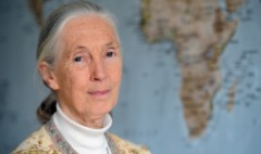 Jane Goodall: SeaWorld 'should be closed down'
