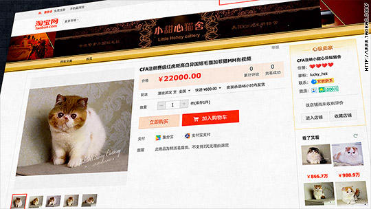 6 surprising things for sale on Taobao