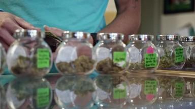 How to legally sell marijuana