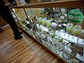 Colorado pot bank sues the Fed