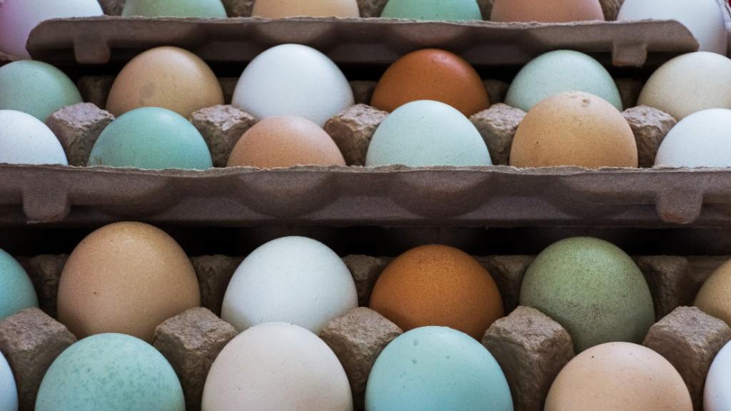 Egg rationing has begun