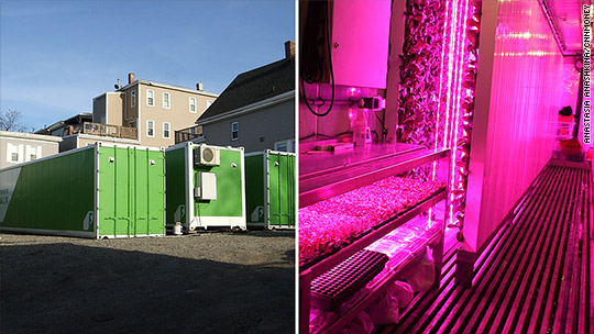 This farm in a box generates $15,000 a month
