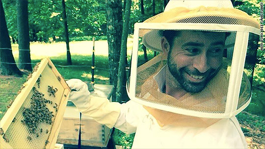 Bees are dying & this man wants to save them