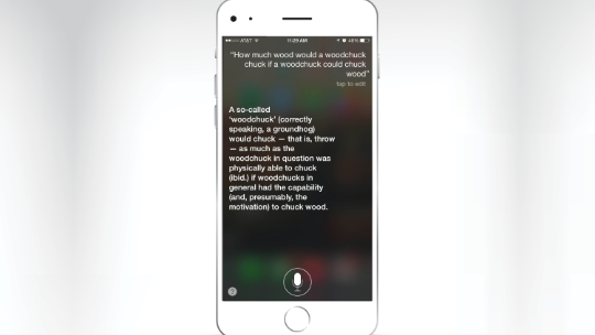 Siri's best Easter eggs