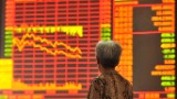 China's stock market continues to free fall