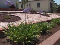 Californians plant drought-friendly landscapes