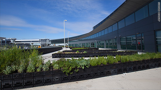 JetBlue opens farm at JFK airport