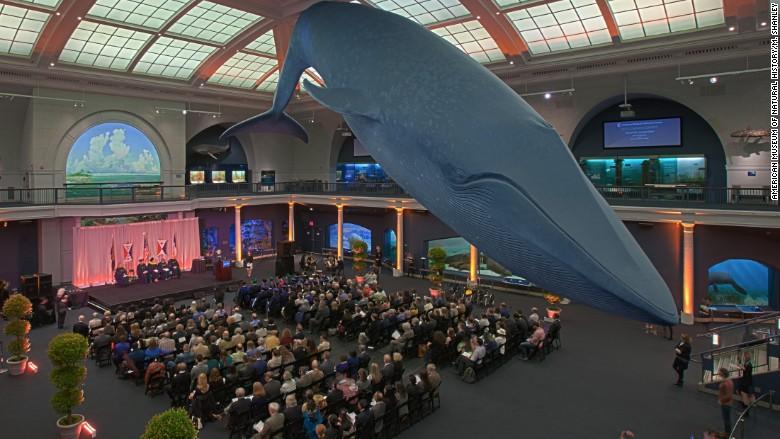 museum stem graduates