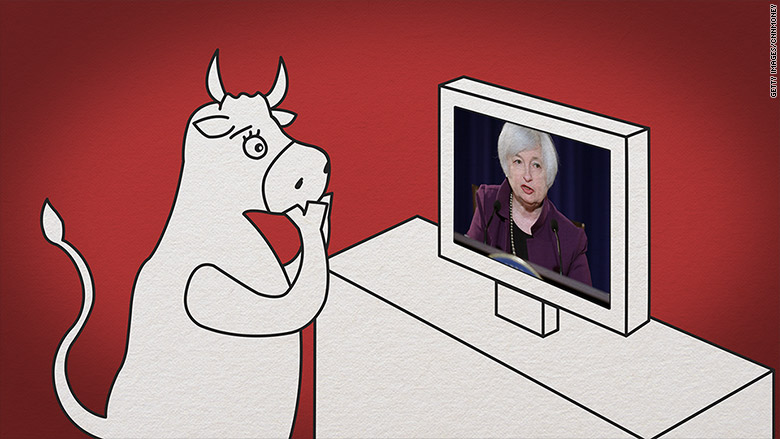 bull watching yellen speak