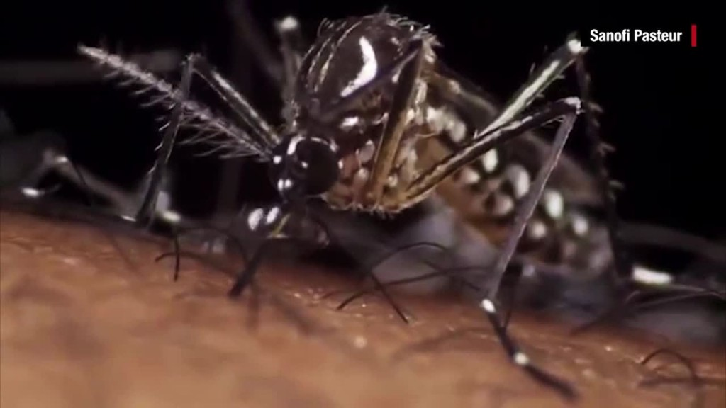 What is the Zika virus?