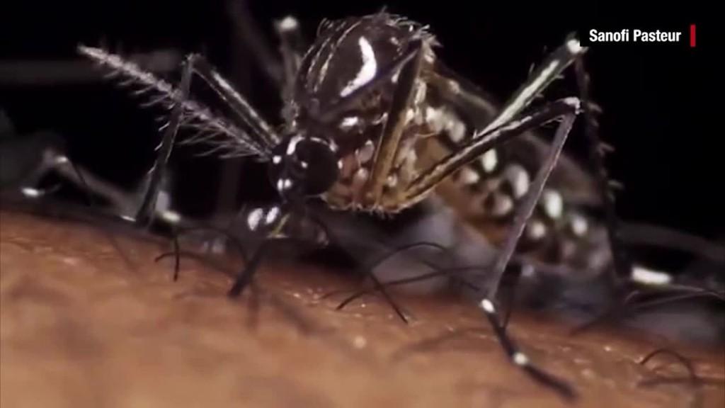 What is the Zika virus?