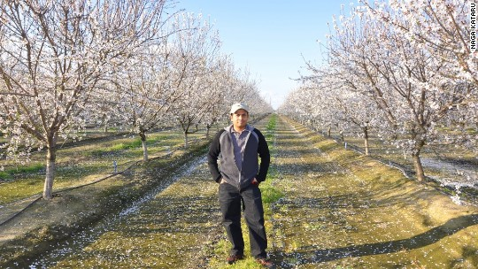 He created Google Alerts. Now he's an almond farmer