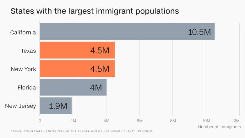 largest immigration population