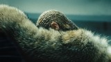Beyonce, Adele rule Grammy nominations