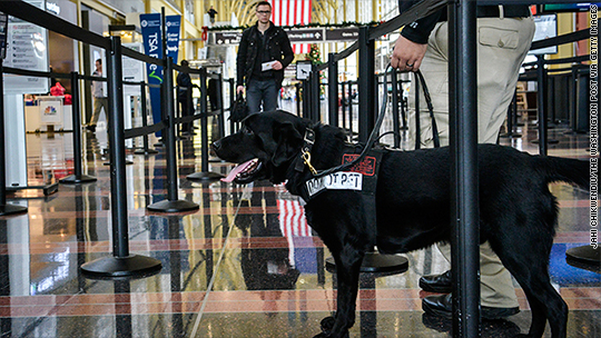 Could this solve TSA's security line problems?