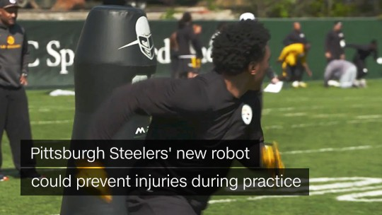 steelers robot