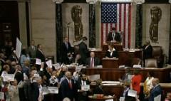 Chaos erupts on house floor over gun control