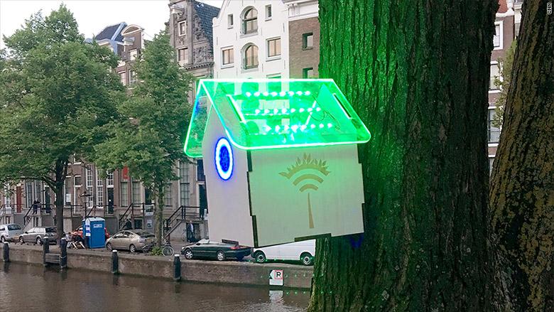 Tree wi-fi