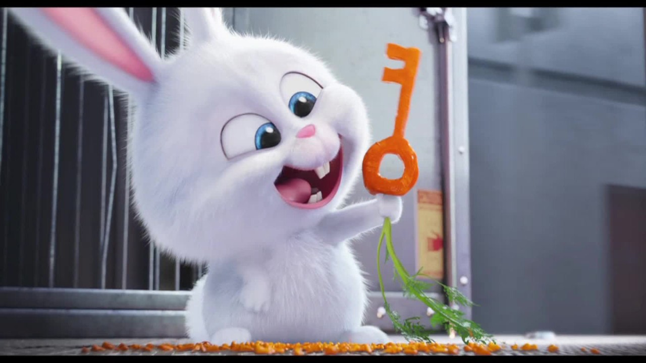 watch the trailer for the secret life of pets   video