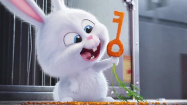 'The Secret Life of Pets' unleashes a great idea but can't curb it