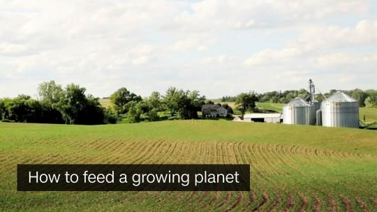 agility feeding planet