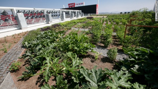 Levi's Stadium, home of 49ers, unveils rooftop farm