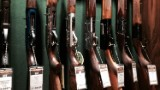 Shareholder presses gunmakers on response to Florida shooting