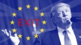 No fear: Brexit, Trump, Italy fail to rattle market