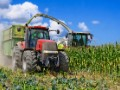 Mexico ready to retaliate by hurting US farmers