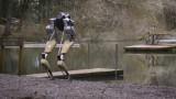 This robot walks like an ostrich