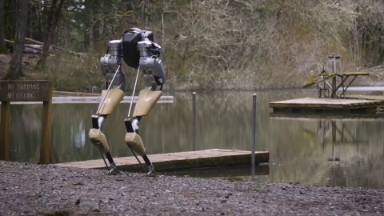 This robot walks like an ostrich