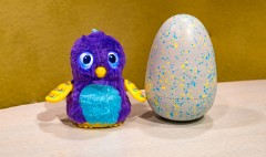 Hatchimals, hit toy of 2016, unveils brand new look