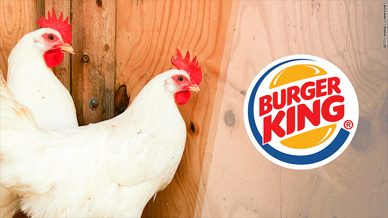 burger king chicken welfare