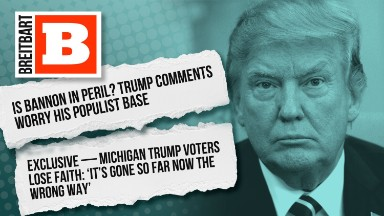 Breitbart and Trump relationship: it's complicated