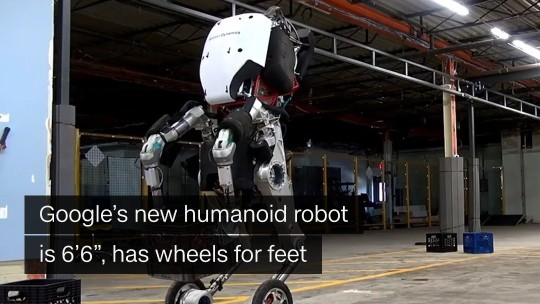 google humanoid robot