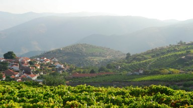 How wine from Portugal helped define free trade