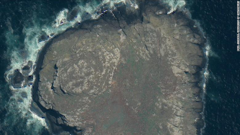 satellite image chatham islands