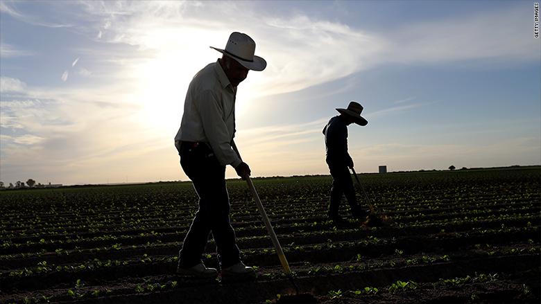 california farm workers