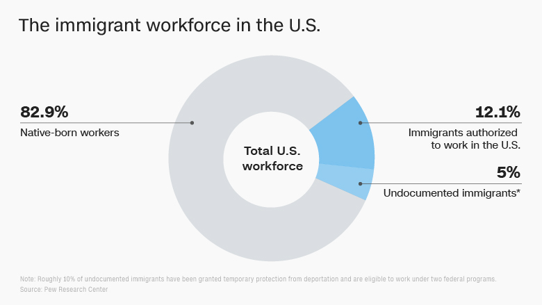 immigration stats workforce